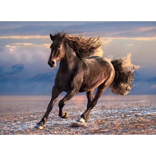 CLEMENTONI PUZZLE FREE HORSE 1000 EL. HQ COLL. 39420